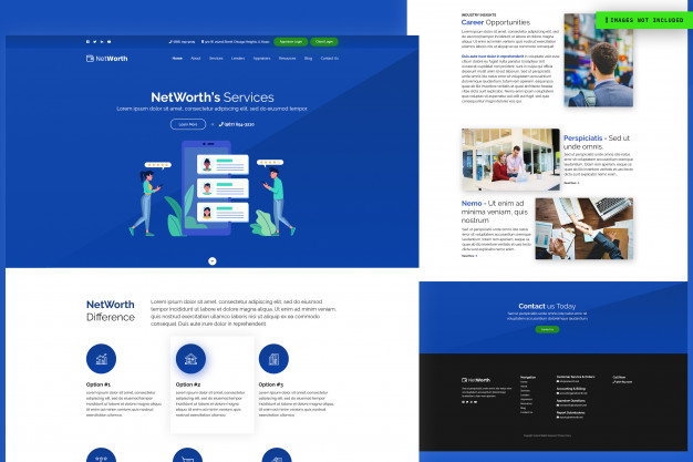 Net worth s services